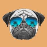 Ręka rysujący portret mopsa pies z lustrzanymi okularami przeciwsłonecznymi Obrazy Stock