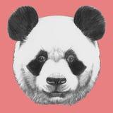 Ręka rysujący portret panda ilustracji