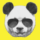 Ręka rysujący portret panda z okularami przeciwsłonecznymi ilustracji