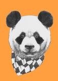 Ręka rysujący portret panda z szalikiem ilustracja wektor