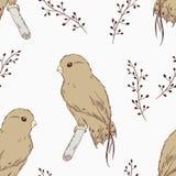 Ręka rysujący ptasi bezszwowy wzór ilustracja wektor