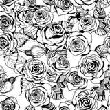Ręka rysujący róża wzór Zdjęcia Royalty Free