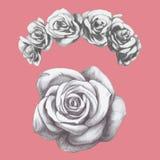 Ręka rysujący różany i kwiecisty wianek ilustracja wektor