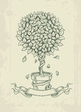 Ręka rysujący rocznika drzewo z spada liśćmi Zdjęcie Stock