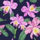 Ręka rysujący storczykowy kwiatu wzór Fotografia Royalty Free