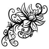 Ręka rysujący stylizujący nakreślenie kwiaty odizolowywający Obraz Stock