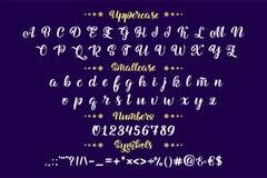 Ręka rysujący typeface Muśnięcie malujący listy Ręcznie pisany pisma abecadło odizolowywający na białym tle Handmade abecadło Fotografia Royalty Free