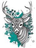 Ręka rysujący wektor uzbrajać w rogi rogacz z wysokość szczegółów ornamentem ilustracji