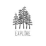 Ręka rysujący wektorowi dzicy lasowi projektów elementy Obrazy Royalty Free