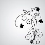 Ręka rysujący wektorowi zawijasa kwiatu elementy Fotografia Royalty Free