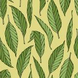 Ręka rysujący wzór z zielonymi liśćmi Zdjęcia Stock