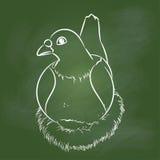 Ręka rysunkowy gołąb na zieleni desce - Wektorowa ilustracja Ilustracja Wektor