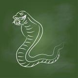 Ręka rysunku wąż na zieleni desce - Wektorowa ilustracja Ilustracja Wektor