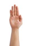 Ręka szyldowy język Fotografia Royalty Free