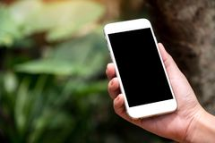 Ręka trzyma białego mądrze telefon z pustym czarnym desktop ekranem w plenerowym z plamy zieleni natury tłem fotografia stock
