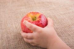Ręka trzyma czerwonego jabłka na kanwie Zdjęcie Royalty Free