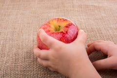Ręka trzyma czerwonego jabłka na kanwie Fotografia Stock