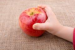 Ręka trzyma czerwonego jabłka na kanwie Obrazy Stock