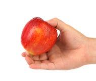 Ręka trzyma czerwonego jabłka z dropets Zdjęcie Stock