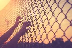 Ręka trzyma dalej łańcuszkowego połączenia ogrodzenie Obraz Stock