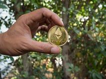 Ręka Trzyma Złotego Bitcoin drzewa tło zdjęcia royalty free