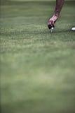 Ręka umieszcza piłkę na golfowym trójniku Zdjęcie Royalty Free