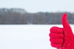Ręka w czerwonej woolen rękawiczce z kciukiem up na zimie Fotografia Stock