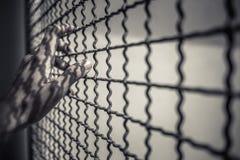 Ręka więźnia mienia metalu nieociosany ogrodzenie z deseniowym cieniem, przestępca blokował w więzienia czekaniu dla wolności Zdjęcia Royalty Free