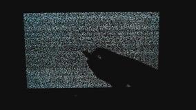 Ręka wyłacza kanały żadny mężczyzny hałasu styl życia tv tło Telewizja ekran z statycznym hałasem powodować złym sygnałem zbiory