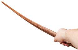 Ręka z Bokken - Japoński drewniany kordzik zdjęcia royalty free