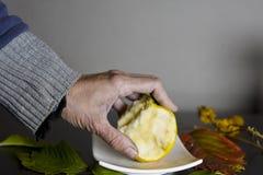 Ręka z jabłkiem Obrazy Stock
