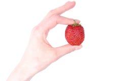 Ręka z truskawką na białym tle Obraz Royalty Free