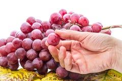 Ręka z winogronem Obraz Royalty Free
