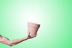 ręka zioło Fotografia Stock
