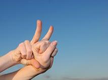 ręka zwierzęcy kształt Zdjęcia Royalty Free