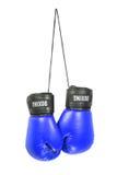 rękawice bokserskie obraz stock