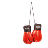 rękawice bokserskie obrazy royalty free