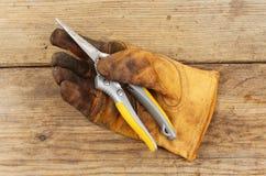 Rękawiczka i secateurs fotografia stock