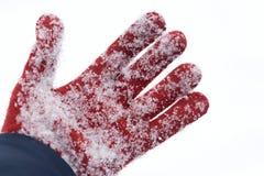 Rękawiczka zakopująca w śniegu po lawiny zdjęcia royalty free