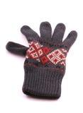 rękawiczkowe szarość Obrazy Royalty Free