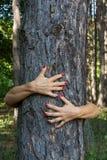 Ręki ściskają drzewa Obraz Royalty Free