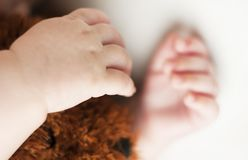 Ręki śpi nowonarodzonego dziecka zamkniętego w górę białego tła na obrazy stock