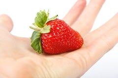 ręki świeża truskawka Zdjęcia Stock