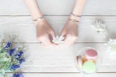 Ręki żeńska kwiaciarnia z kwiatami dla bukieta Obrazy Stock