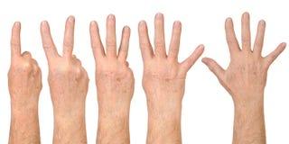 ręki Zdjęcia Stock