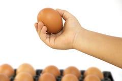 Ręki chłopiec, chwytów jajka zdjęcia royalty free