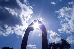 ręki chwytający słońce Fotografia Stock