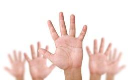 ręki dźwignięcie Zdjęcie Stock