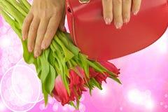 Ręki kobieta trzyma pięknych tulipany z menchiami i bielem robiącymi manikiur na gwoździach, czerwona torba zdjęcie stock
