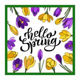 Ręki literowania wiosna z krokusami Cześć Ilustracja w ręka rysującym stylu royalty ilustracja
